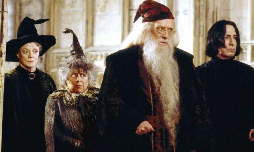 Harry Potter e la Camera dei Segreti: una minaccia nascosta nel castello di Hogwarts