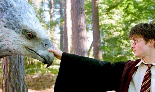 Harry Potter e il Prigioniero di Azkaban: il nemico è Sirius Black